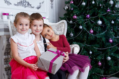 Kids sitting under Christmas magenta tree with gift-box Royalty Free Stock Photo