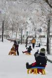 Kids on the sledge Royalty Free Stock Photos