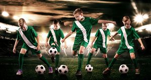 Kids - soccer champions. Boys in football sportswear on stadium with ball. Sport concept with soccer team. stock images