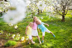 Kids in spring park. Child at blooming cherry tree. Kids playing in spring park. Children running in sunny garden with blooming cherry and apple trees. Boy and stock image
