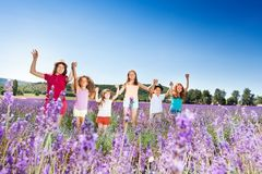 Kids standing in lavender field and holding hands Royalty Free Stock Photo