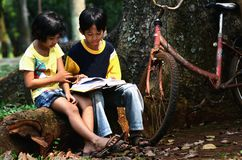 Kids Studying Stock Photo