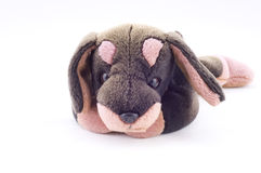 Kids sweet dog toy Royalty Free Stock Photography