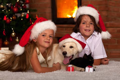 Kids and their pets at Christmas time stock images