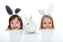 Kids with their white rabbit pet Stock Photo