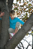 Kids in Trees. A young girl climbing around on tree branches finds herself stuck Royalty Free Stock Photo