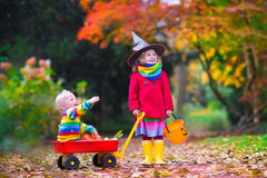 Kids trick or treating at Halloween. Little girl in witch costume and baby boy in wheel barrow holding a pumpkin playing in autumn park. Kids at Halloween trick Stock Images