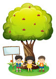 Kids under the tree beside the empty wooden board Royalty Free Stock Photography