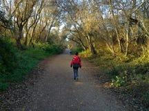 Kids walking down trail Stock Image