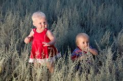 Kids are walking in a field at dusk Royalty Free Stock Photos
