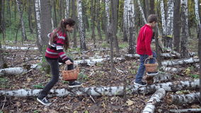 Kids walking in the forest and looking for mushrooms. Two kids walking in the dark autumn forest and looking for mushrooms stock footage