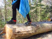 Kids walking on tree trunks stock photography