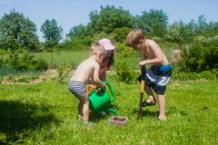 Gardening in the yard. Kids want to grow a tree with cherries. Preparation to gardening in the yard Royalty Free Stock Image