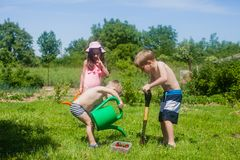 Gardening in the yard. Kids want to grow a tree with cherries. Preparation to gardening in the yard Royalty Free Stock Images