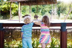 Kids watch elephants at zoo. Children and animals. Little boy and girl watch huge elephants on day trip to a zoo. Kids watching wild animals at wildlife safari Stock Images