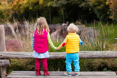 Free Kids Watching Animals In The Zoo Stock Photography - 75600452