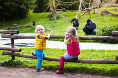Kids watching animals at the zoo Royalty Free Stock Images