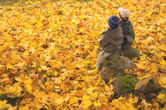 Kids watching fall 3861 Royalty Free Stock Photos