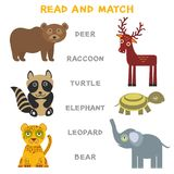 Kids words learning game worksheet read and match. Funny animals deer raccoon turtle elephant leopard bear Educational Game for Pr Royalty Free Stock Photos