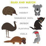 Kids words learning game worksheet read and match. Funny animals koala ostrich Echidna Tasmanian devil platypus parrot Educational. Game for Preschool Children Stock Image