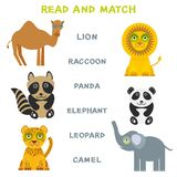 Kids words learning game worksheet read and match. Funny animals lion raccoon panda elephant leopard camel Educational Game for Pr Royalty Free Stock Photography