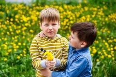 Kids and yellow dandelions stock image