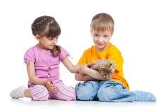 2 kidsplaying с котенком Стоковое Изображение