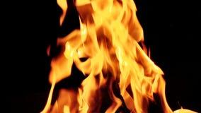 kiedy tło płomienie odizolowanego wspaniale zdjęcie wideo