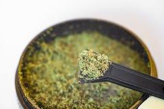 Kief in grinder for weed macro top view isolated on white background. Kief in grinder for weed macro top view isolated on white backgrou Stock Images