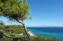 Kiefer auf dem Hügel und dem Panoramablick auf dem Türkismeer und der sandige Strand, Griechenland lizenzfreie stockfotos