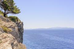 Kiefer auf dem Ufer des blauen Meeres kroatien Lizenzfreies Stockfoto