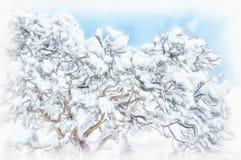 Kiefer bedeckt mit Schnee nach Schneesturm lizenzfreie stockfotos
