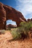 Kiefer-Bogen wölbt Nationalpark Moab Utah Stockbild