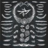 Kiefer, Fichtenzweige, Kegel silhouett pinsel lizenzfreie abbildung