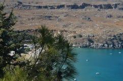 Kiefer mit einem Strand und einem Berg im backround Lizenzfreies Stockbild