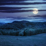 Kiefer nähern sich Wald und Tal in den Bergen nachts Stockfoto