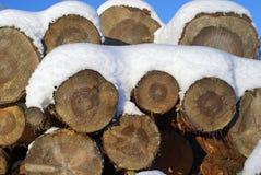 Kiefer-Protokolle unter Schnee Stockbild
