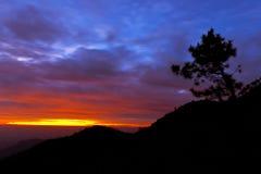 Kiefer, Schattenbilder, Berg, Himmel, Landschaft Lizenzfreie Stockfotografie
