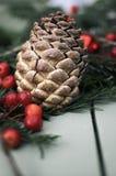 Kieferkegel- und -weihnachtsdekorationen Lizenzfreie Stockfotos