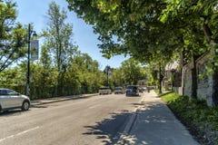 Kiefern-Allee Montreal Lizenzfreies Stockbild
