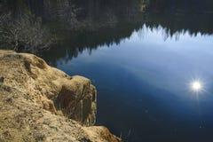 Kiefern auf der Bank von Teich Lizenzfreie Stockbilder