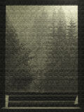 Kiefern aus dem Fensterhintergrund heraus Stockfotografie