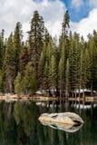Kiefern-, Tannen- und Mammutbaumwald auf einem See Lizenzfreies Stockfoto