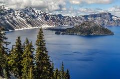 Kiefern-Wälder im Crater See-Nationalpark lizenzfreies stockbild