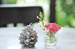 Kiefernblumenkerze, Weihnachtskerze und Vase stockfoto