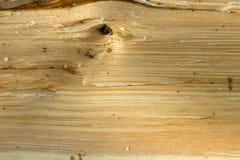 Kiefernbruch-Holzbeschaffenheit Stockfotos