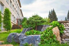 Kiefernholz mit geformter Ordnungskrone unter Naturstein Lizenzfreies Stockfoto