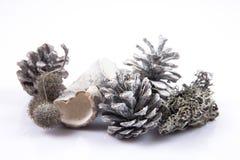 Kiefernkegel lokalisiert auf weißem Hintergrund mit Weihnachtsbällen Lizenzfreie Stockbilder