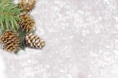 Kiefernkegel und Tannenbaum auf funkelndem Hintergrund Lizenzfreies Stockfoto