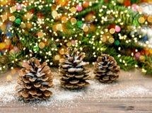 Kiefernkegel- und -weihnachtsbaumaste Farbe beleuchtet Dekoration Stockfotos